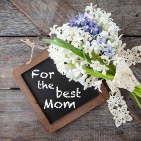向我们的母亲致敬 – A Tribute to Our Mothers
